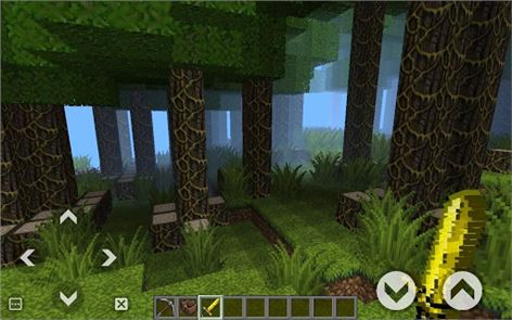 World Craft: Survival image