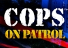 Cops – On Patrol for PC Windows and MAC Free Download