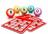 BINGO para Windows PC 10/8/7 O MAC