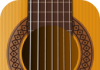 Real Guitar – Virtual Guitar Pro