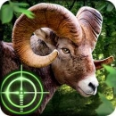 Download Wild Hunter 3D Android App for PC/Wild Hunter 3D on PC