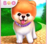 Boo – The World\'s Cutest Dog