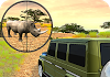 Safari Hunting 4×4